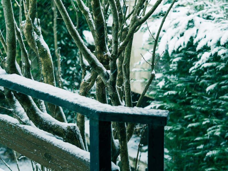 Outdoors падения снега в сельской местности стоковые фотографии rf
