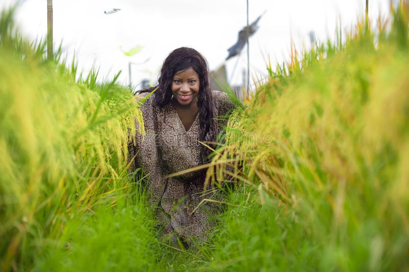 Outdoors fresh portrait of young beautiful and happy black afro American woman in cool dress having fun at tropical rice field. Enjoying exotic holidays trip in royalty free stock images