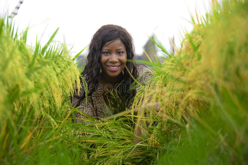 Outdoors fresh portrait of young beautiful and happy black afro American woman in cool dress having fun at tropical rice field. Enjoying exotic holidays trip in stock photography