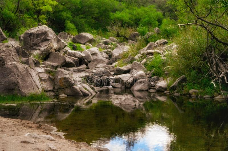 Outdoors nature landscape forest details green trees and plants and potable water river. Outdoors awe inspiring nature landscape with rocks in the background royalty free stock image