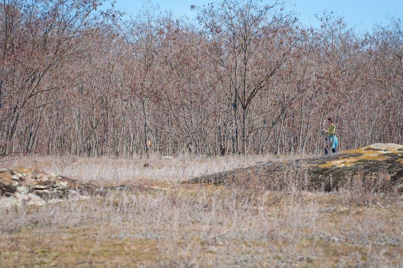 outed的 检验站棱镜和电子composter orienteering的 运动员接近控制点 库存图片
