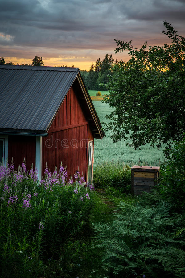 Download The Outhouse stock image. Image of field, landscape, primrose - 33412271