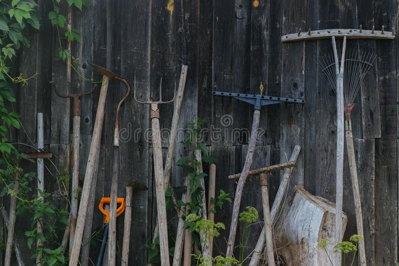 Outils de ferme sur un fond en bois photo libre de droits