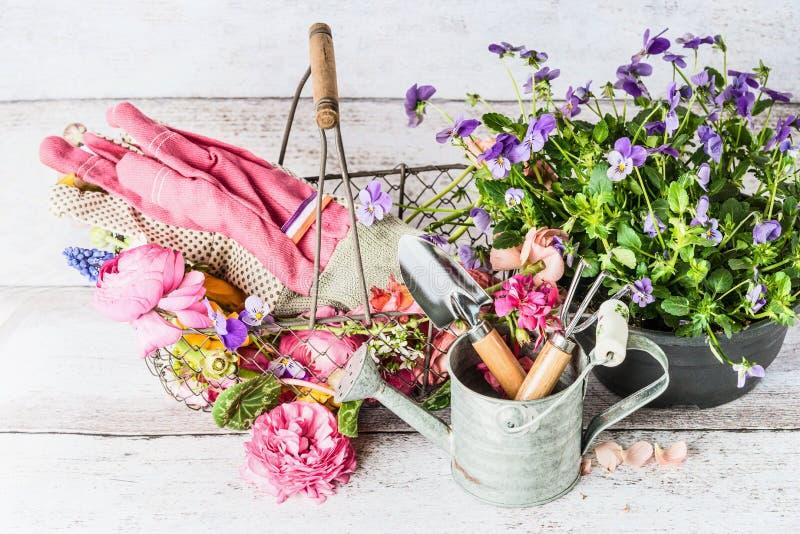 Outils De Jardin Avec La Boîte, Le Panier Et Les Fleurs D\'arrosage ...