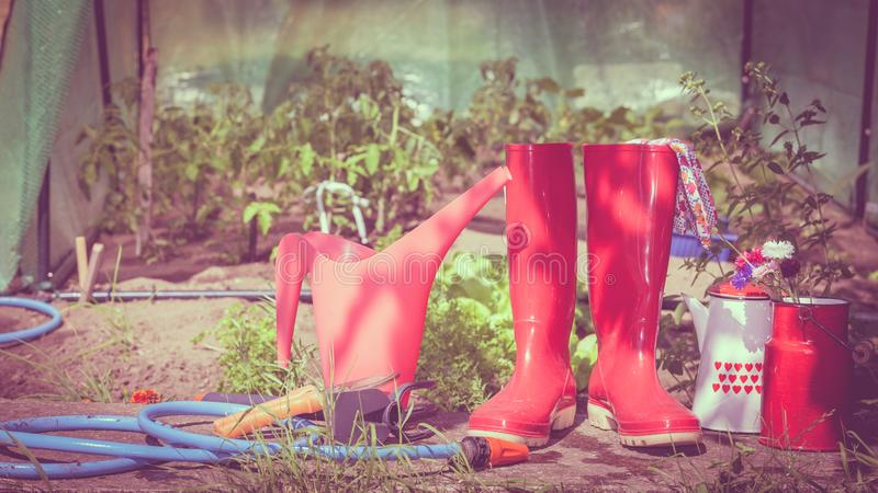 Outils de jardinage ext?rieurs dans le jardin photo libre de droits