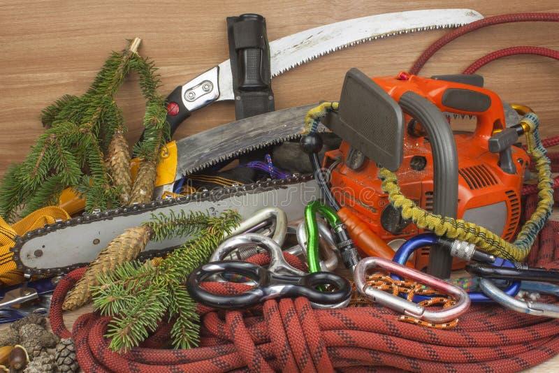 Outils pour équilibrer des arbres, arboristes de service Tronçonneuse, corde et carabiners pour travailler le bûcheron images stock