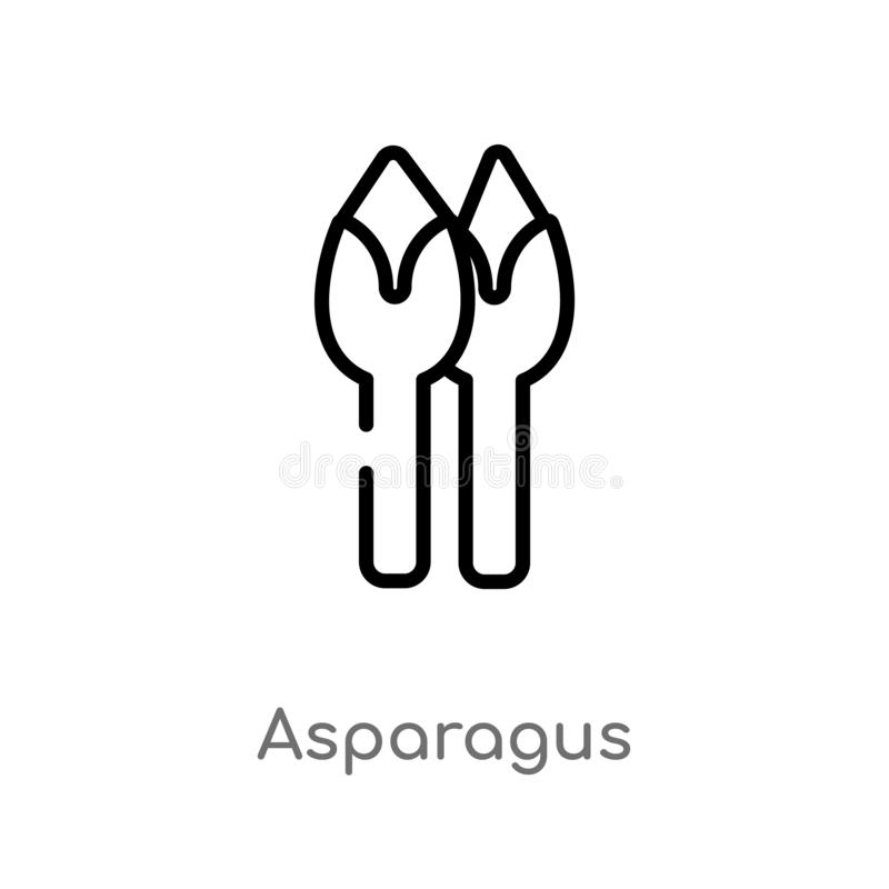 outline asparagus vector icon. isolated black simple line element illustration from fruits concept. editable vector stroke stock illustration