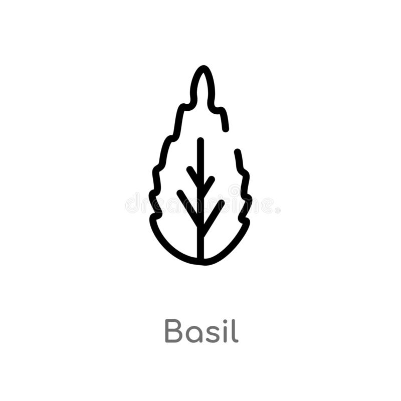 outline basil vector icon. isolated black simple line element illustration from fruits and vegetables concept. editable vector royalty free illustration