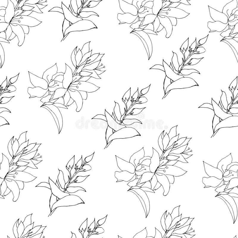 Light background from contour flowers. Outline drawing with flowers and blooming herbs. Vintage texture for decoration of fabric, royalty free illustration