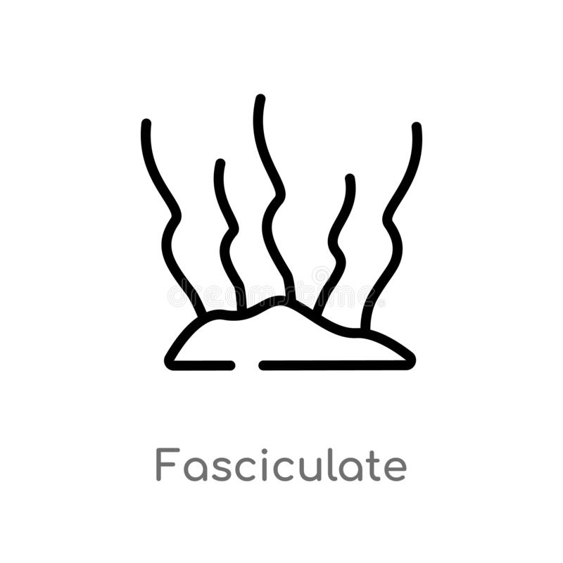 outline fasciculate vector icon. isolated black simple line element illustration from nature concept. editable vector stroke vector illustration