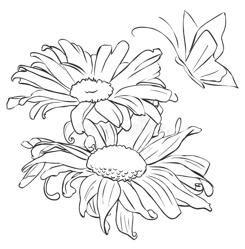 Outline Flower For Painting Stock Vector