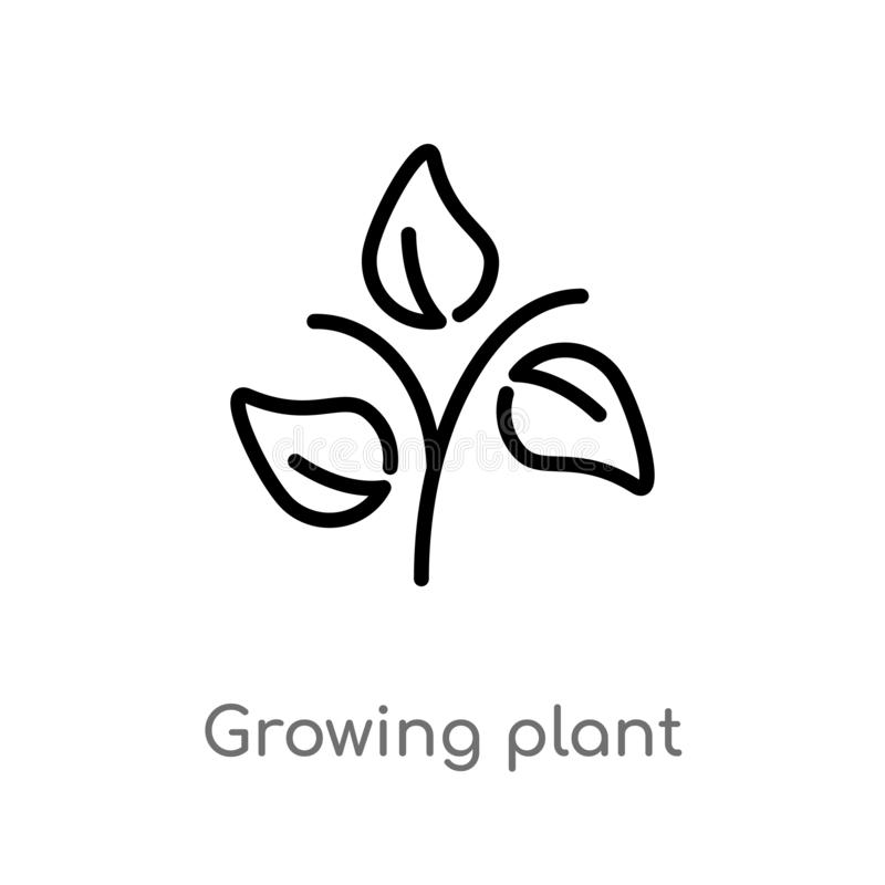 outline growing plant vector icon. isolated black simple line element illustration from ecology concept. editable vector stroke vector illustration