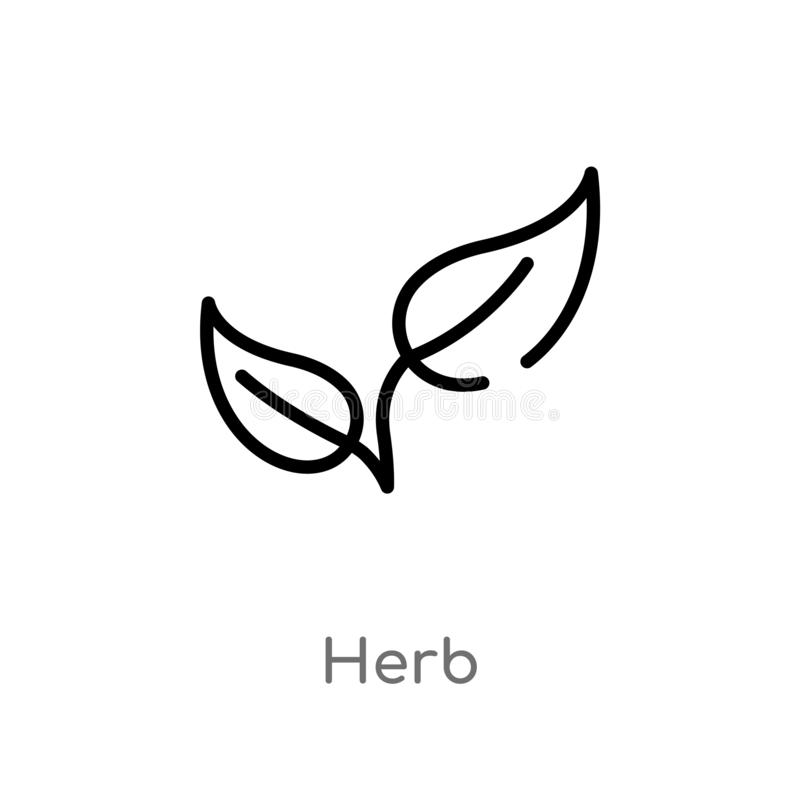 Free Outline Herb Vector Icon. Isolated Black Simple Line Element Illustration From Food Concept. Editable Vector Stroke Herb Icon On Stock Photos - 144282313