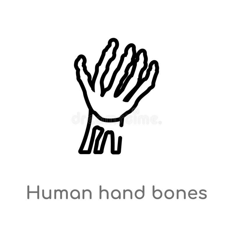 outline human hand bones vector icon. isolated black simple line element illustration from human body parts concept. editable vector illustration