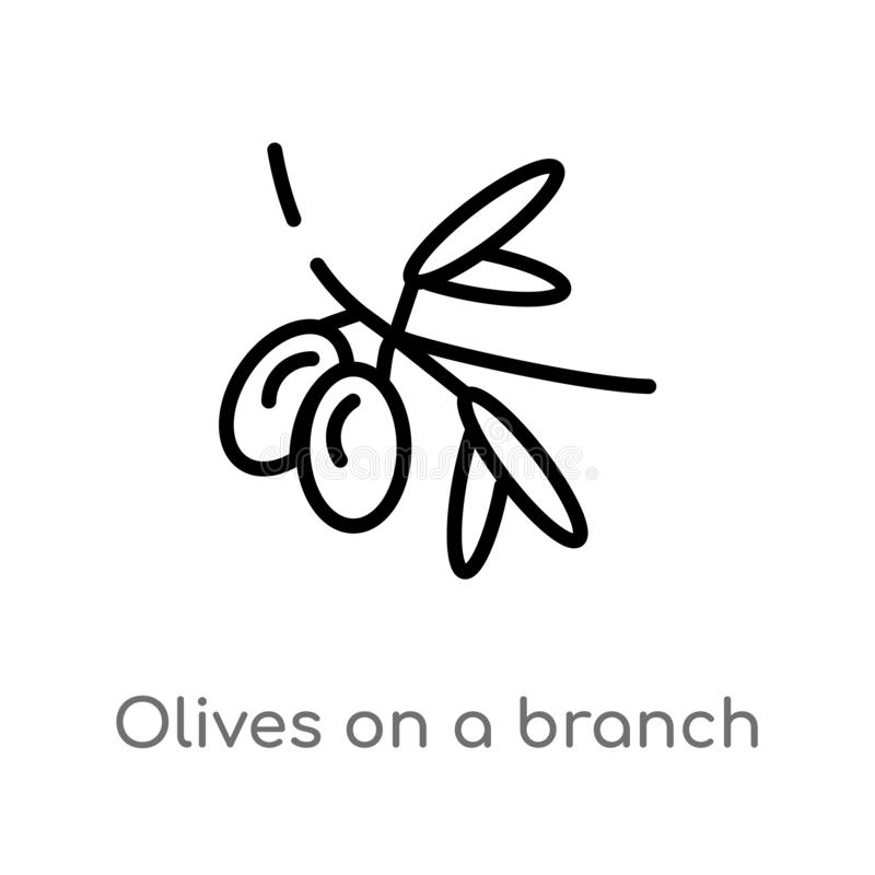 outline olives on a branch vector icon. isolated black simple line element illustration from ecology concept. editable vector stock illustration