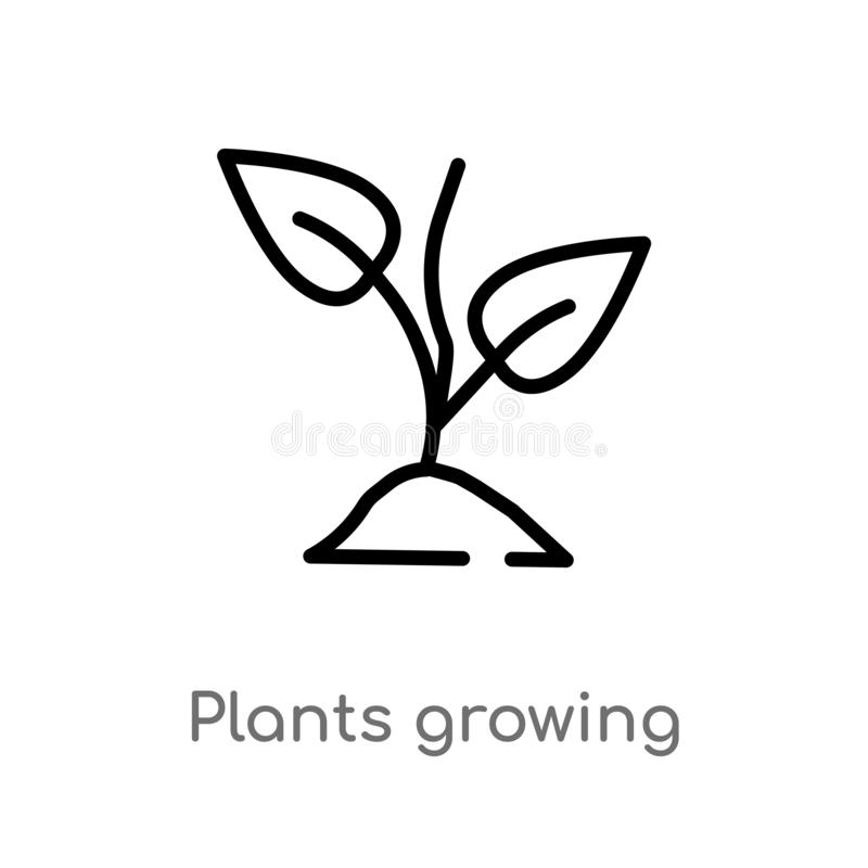 outline plants growing vector icon. isolated black simple line element illustration from nature concept. editable vector stroke stock illustration