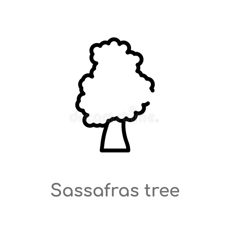 outline sassafras tree vector icon. isolated black simple line element illustration from nature concept. editable vector stroke vector illustration