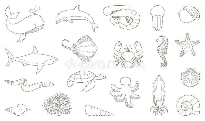 The outlines of fish and other sea creatures royalty free illustration