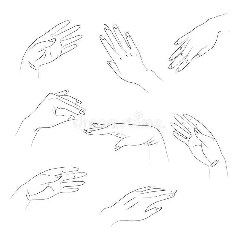 Outlines of hands. On white background