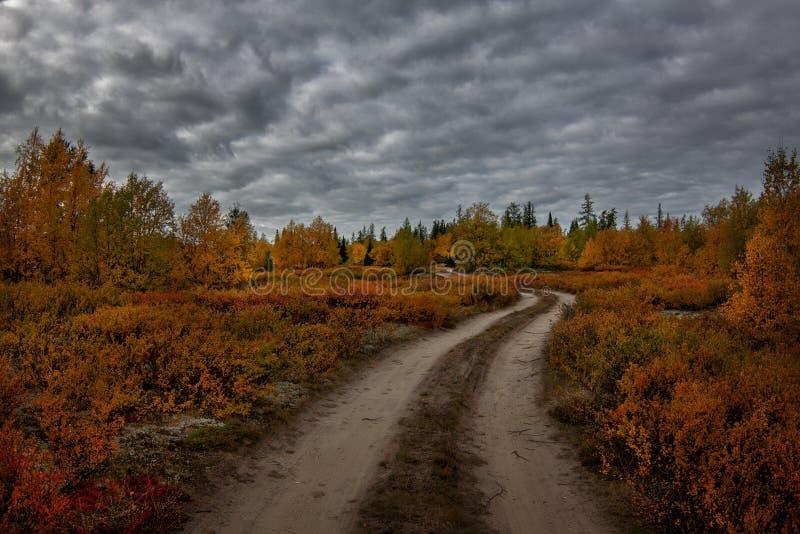 outono ártico mágico no norte distante do russo imagens de stock