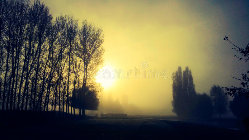 Download Outono foto de stock. Imagem de manhã, sunrise, outono - 80102688