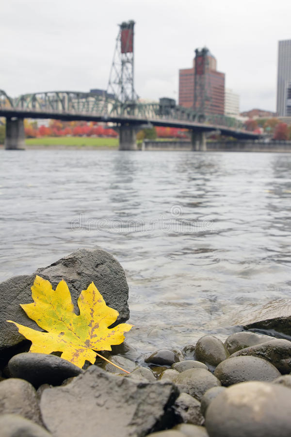 outono ao longo do rio Portland Oregon de Willamette foto de stock