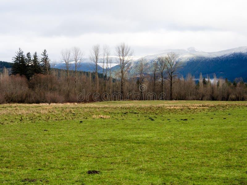 outono atrasado nas montanhas da curvatura norte, estado de Washington foto de stock royalty free