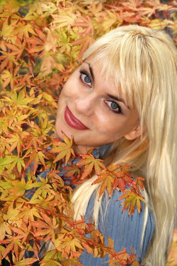 Outono com olhos azuis imagem de stock royalty free
