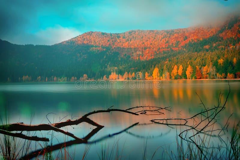 outono da manhã foto de stock royalty free