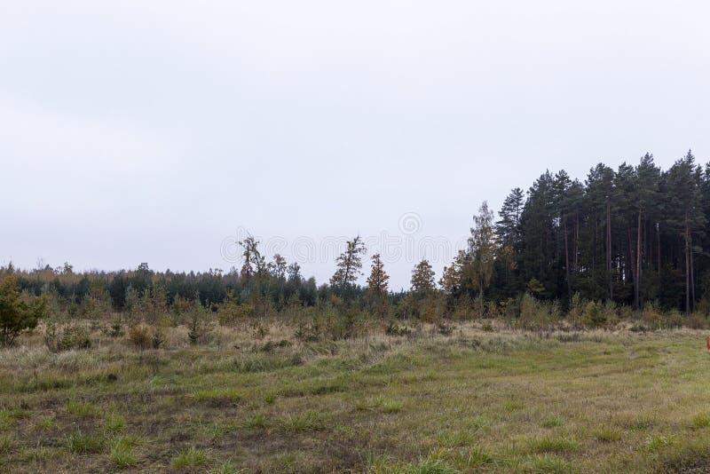outono da paisagem fotos de stock royalty free