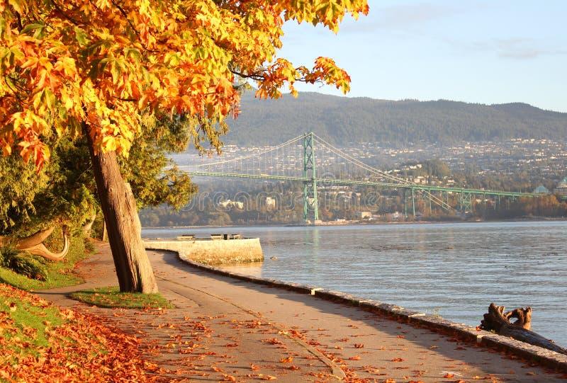 Outono da paredão do parque de Stanley, Vancôver fotos de stock royalty free