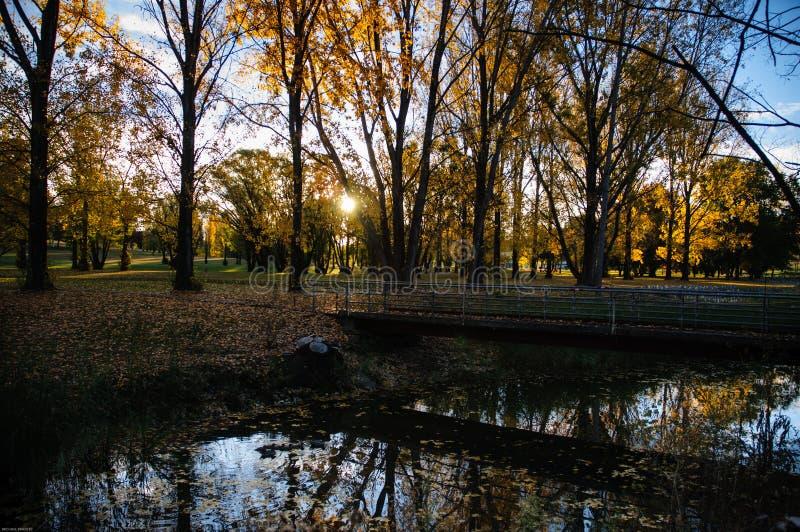 outono de Armidale fotografia de stock royalty free