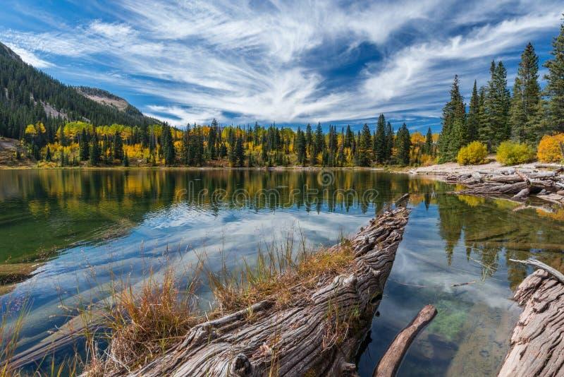 outono de Colorado foto de stock