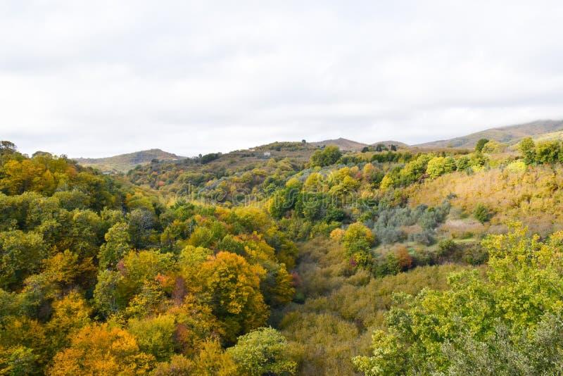 outono do montain da vista imagem de stock royalty free