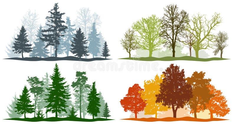 outono do verão da mola do inverno das árvores de floresta ilustração do vetor de 4 estações ilustração stock