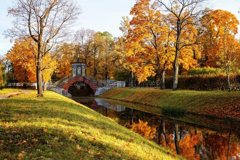 outono dourado em Alexander Park perto de Tsarskoye Selo A cidade região de Pushkin, Leninegrado Vista da ponte transversal fotos de stock royalty free