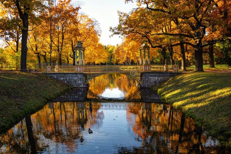 outono dourado em Alexander Park perto de Tsarskoye Selo A cidade região de Pushkin, Leninegrado Vista das pontes chinesas fotos de stock royalty free