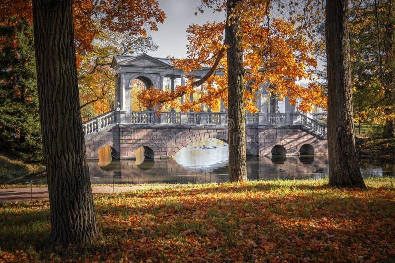 outono dourado no parque de Catherine, Tsarskoye Selo A cidade região de Pushkin, Leninegrado Ponte de mármore do paládio fotografia de stock
