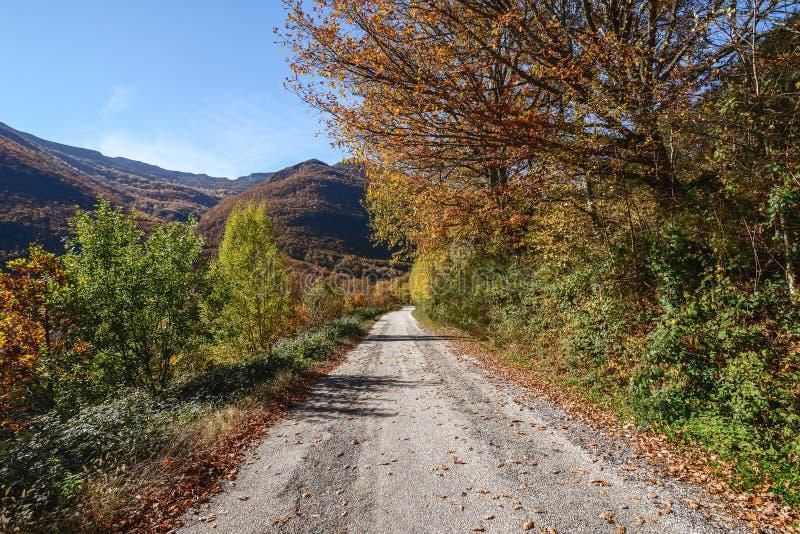 outono em Bierzo fotos de stock royalty free