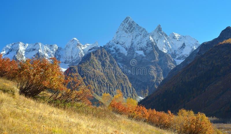 Outono em Cáucaso fotos de stock