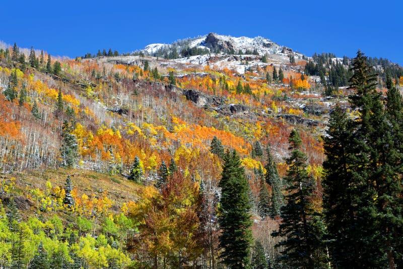 Outono em Colorado fotos de stock royalty free