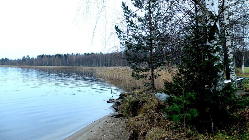 Outono em Finlandia fotografia de stock