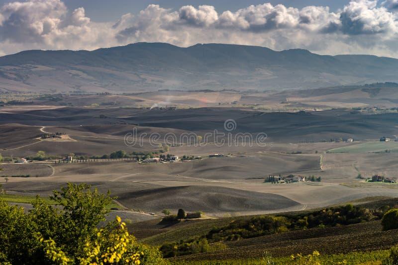 Outono em Italy Montes arados amarelos de Toscânia com sombras e linhas interessantes fotografia de stock