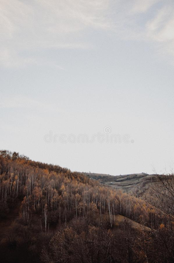 outono em Kukes Albânia foto de stock royalty free