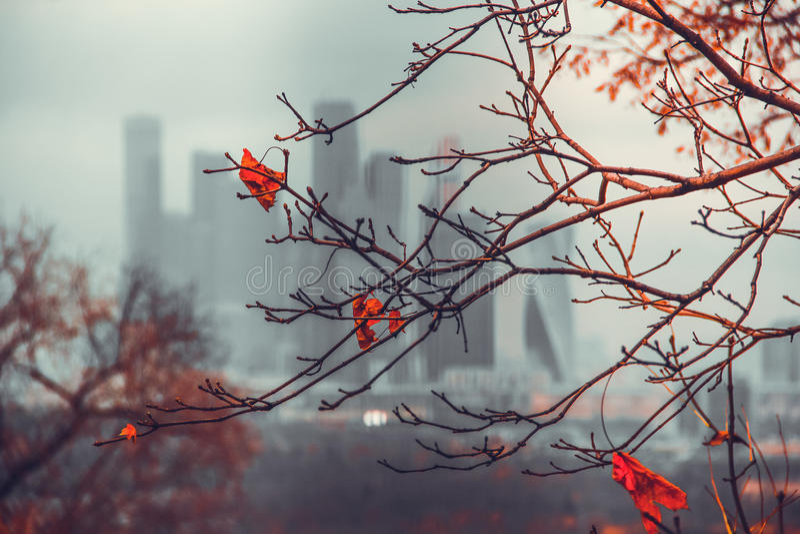 Outono em Moscovo imagens de stock royalty free