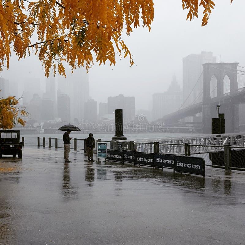 outono em NY foto de stock royalty free