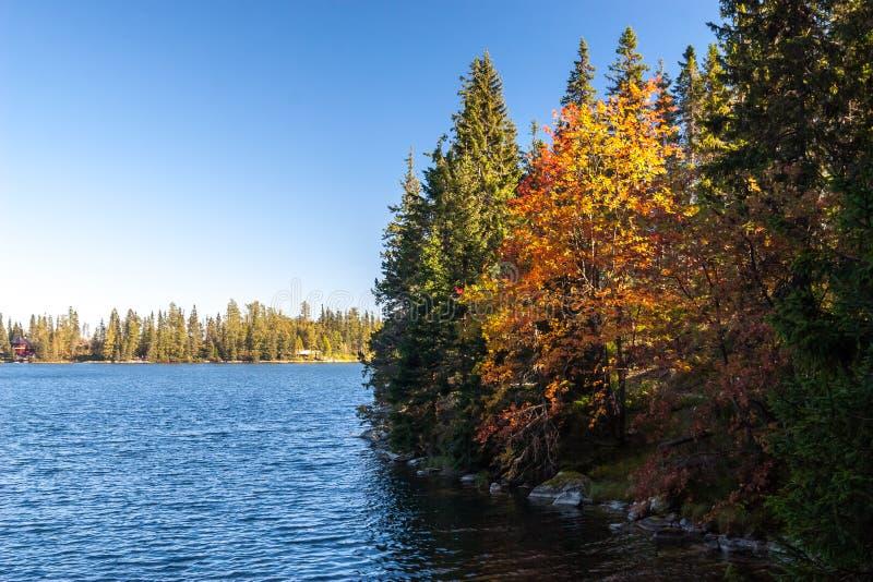 outono em Strbske tarn, montanhas altas de Tatras, Eslováquia imagens de stock