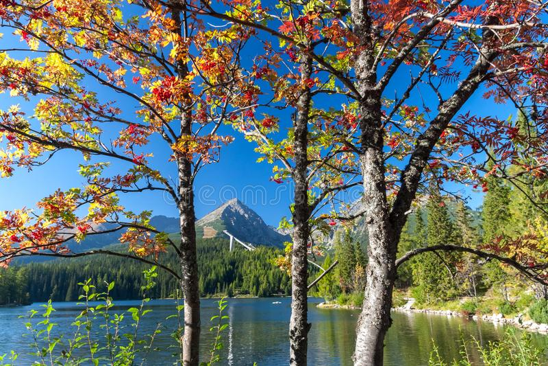 outono em Strbske tarn, montanhas altas de Tatras, Eslováquia fotografia de stock