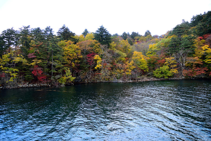 outono em Towada fotos de stock royalty free
