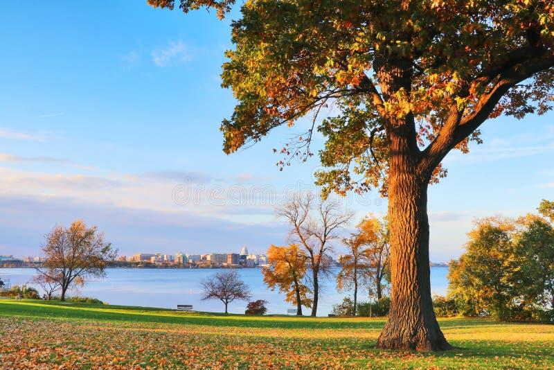 Outono em uma cidade fotos de stock